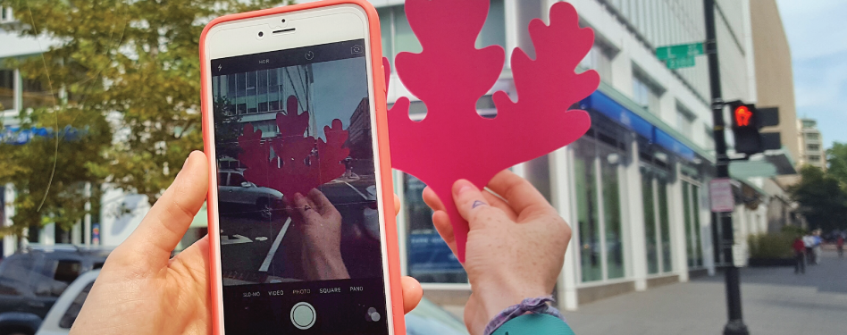 Easy steps for taking the perfect #FindyourLEED photo